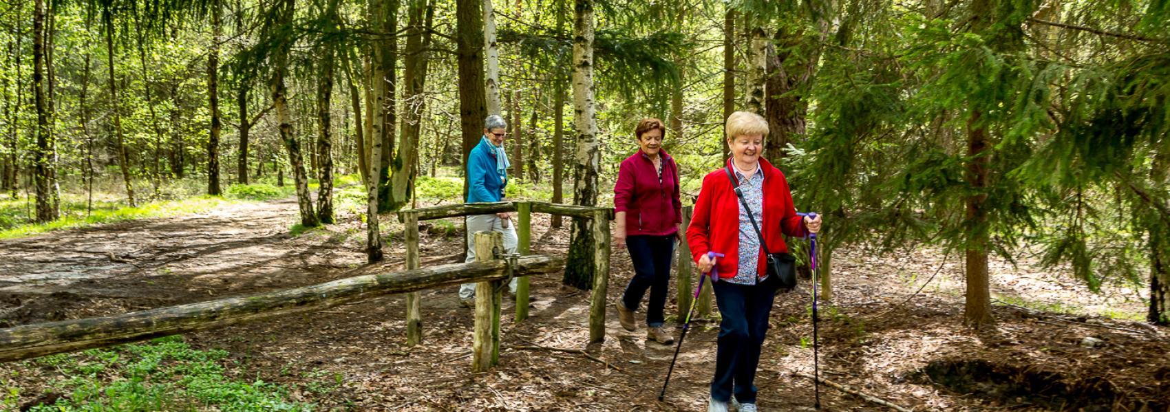 nordic walking in het bos