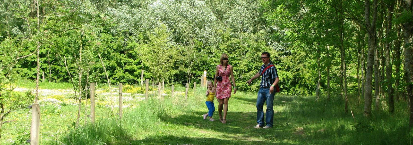 wandelaars in het orveytbos