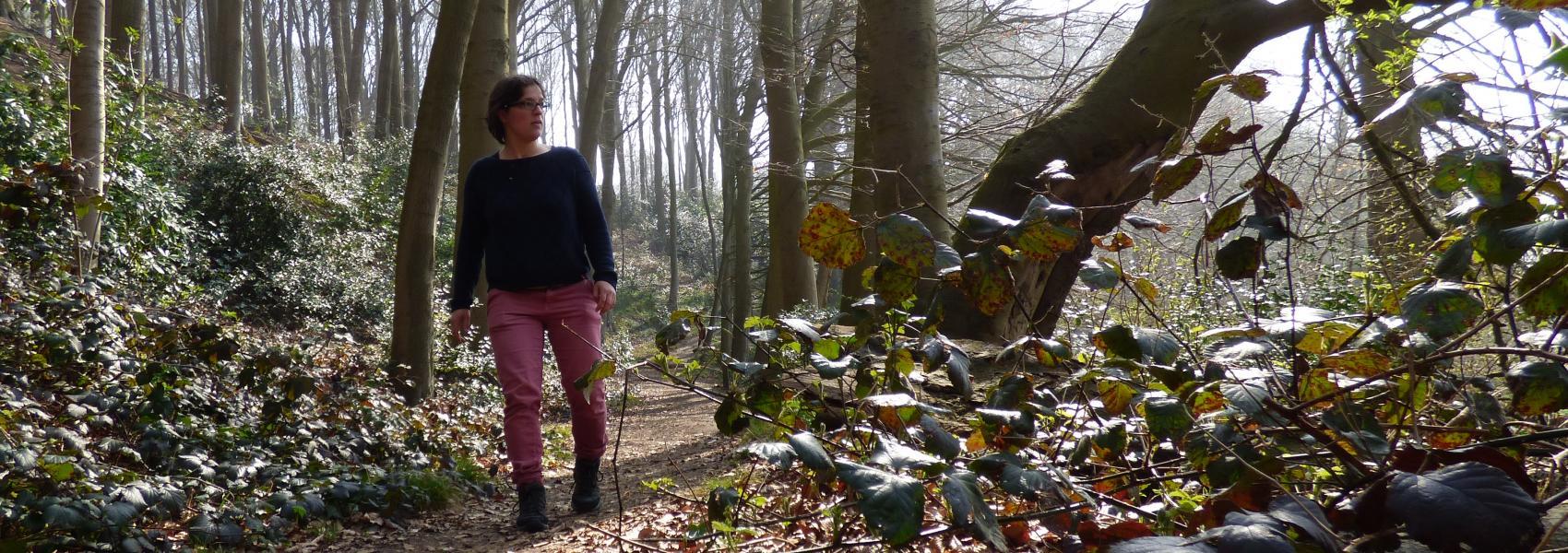 wandelaar in het bos