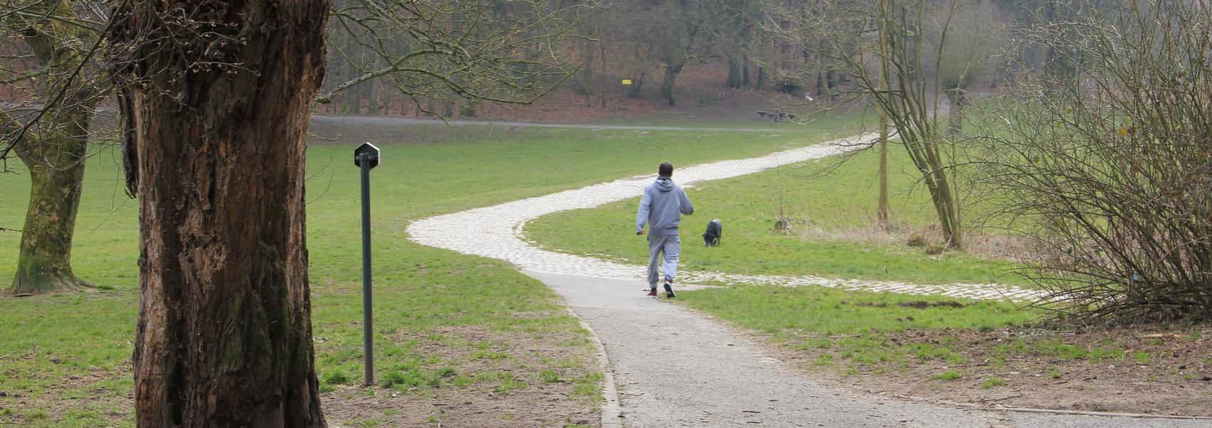 wandelaar met hond