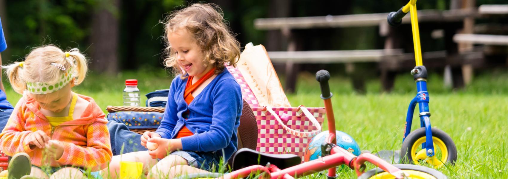 kinderen aan het picknicken
