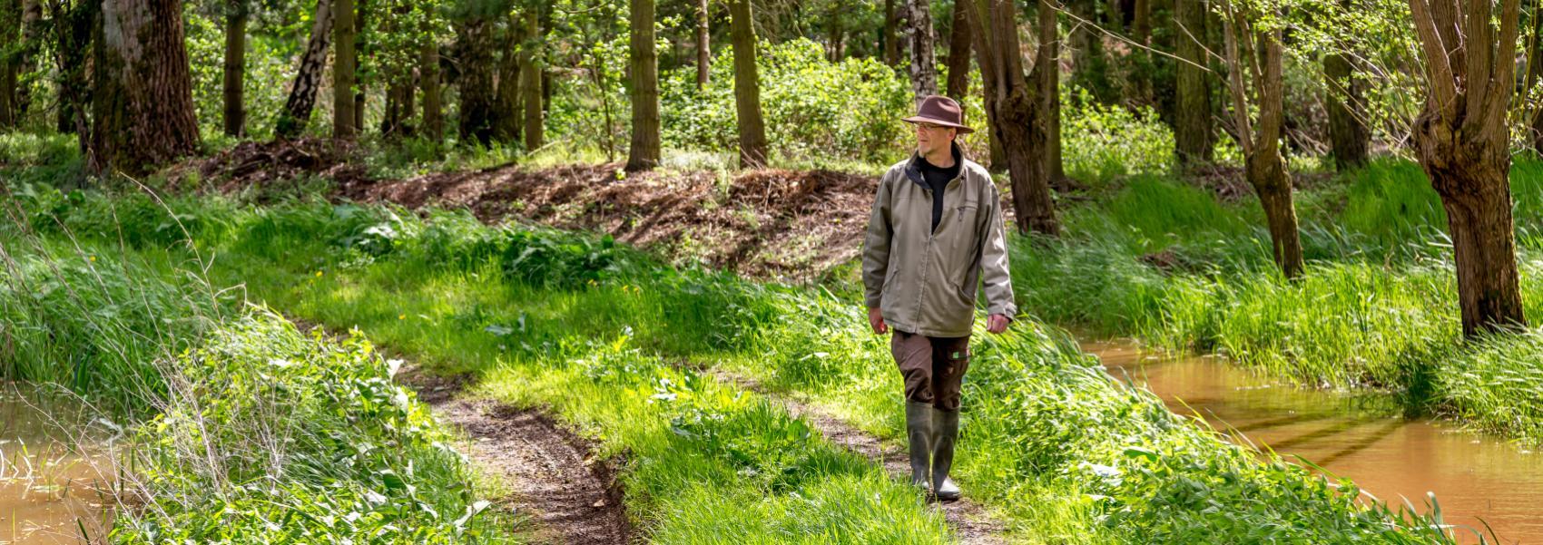 wandelaar langs het beekje in het bos