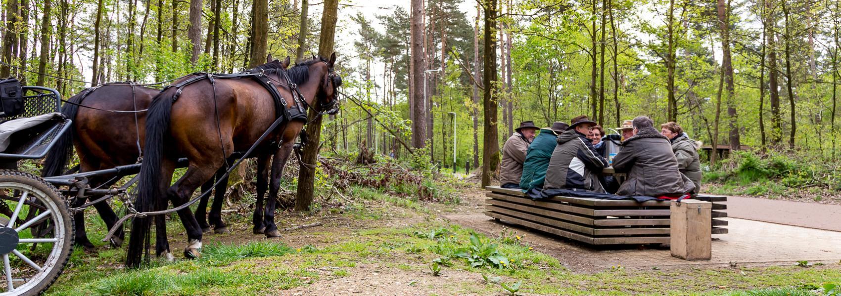 ruiters met paarden aan bank