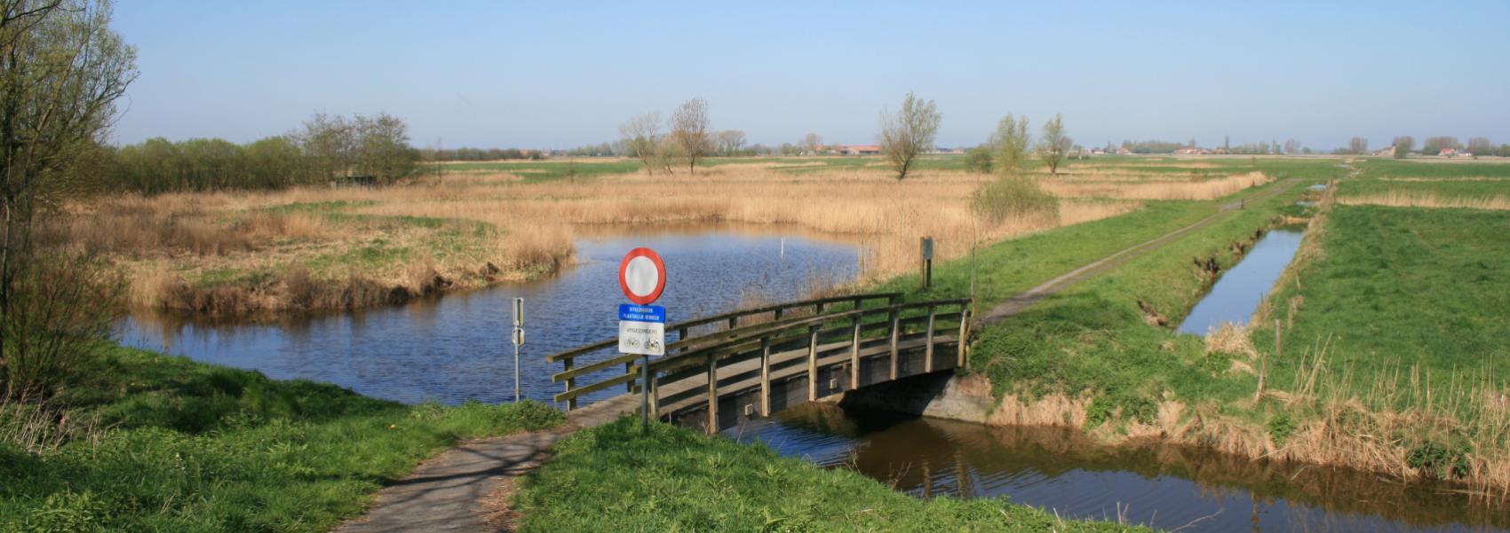 brugje over het water in het landschap