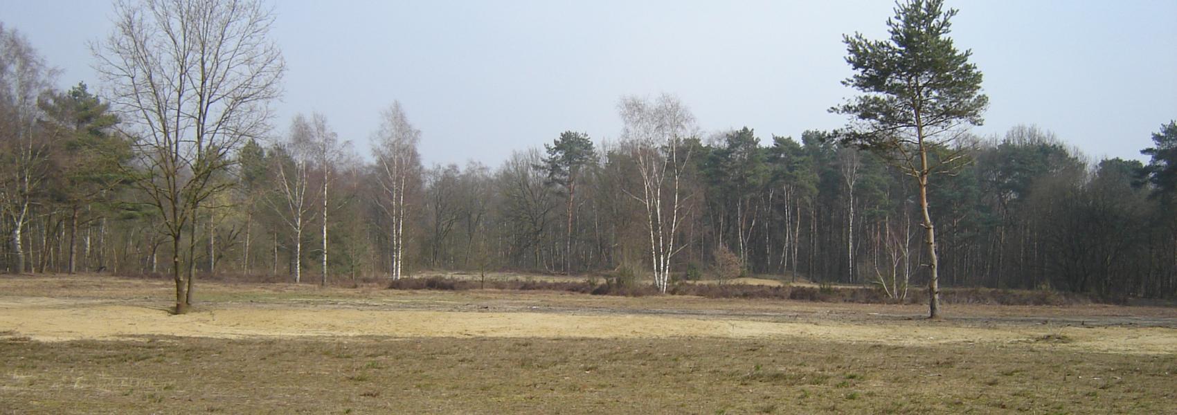 Teunenberg