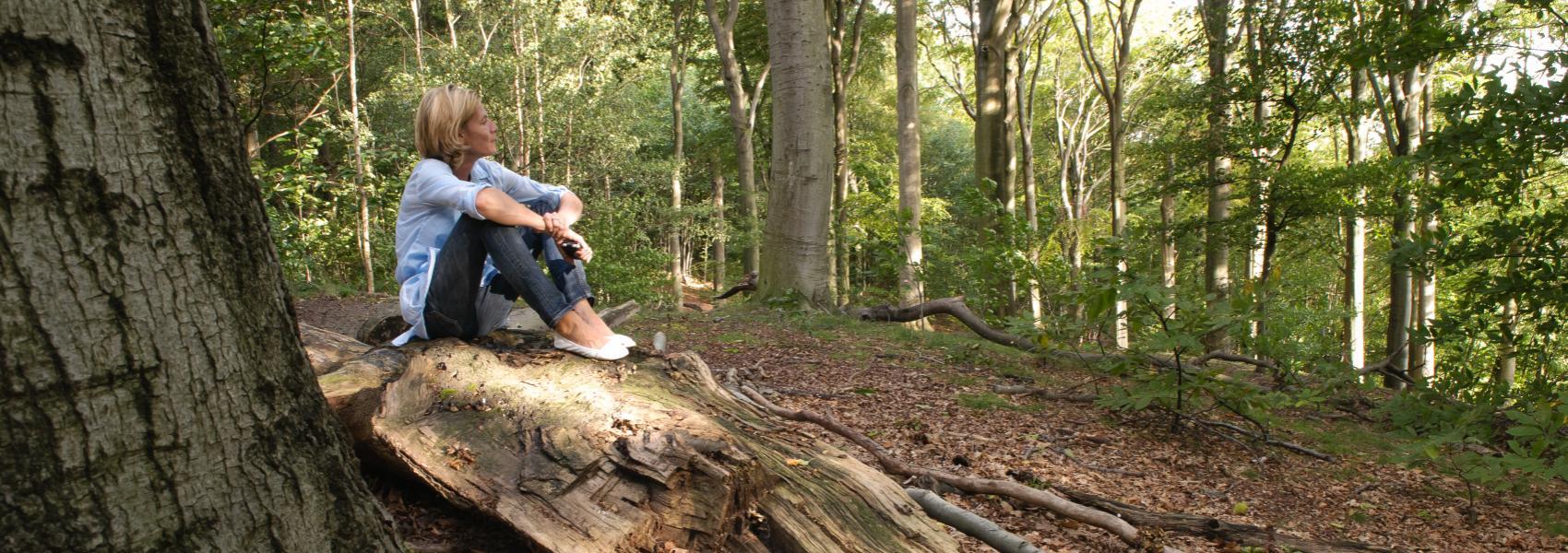 vrouw op een boomstam genietend van het uitzicht