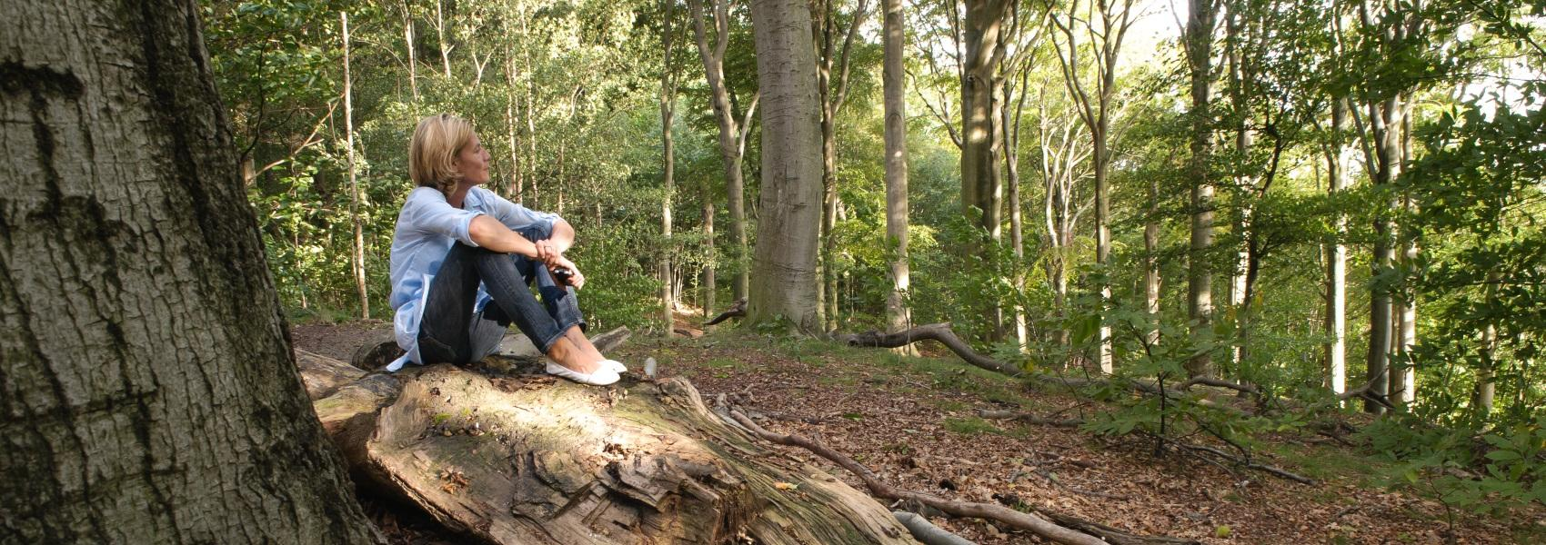 vrouw zittend op boomstam