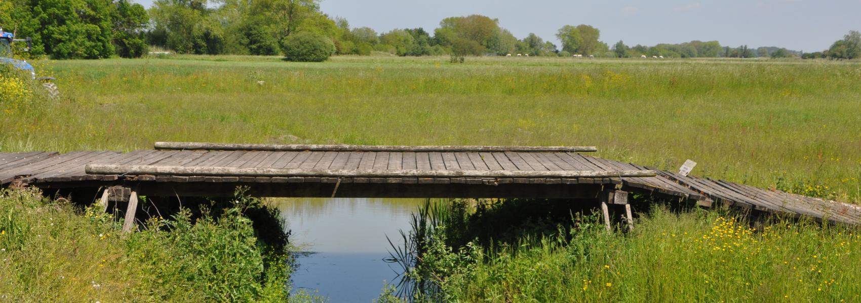 de hooipiete (oude brug)