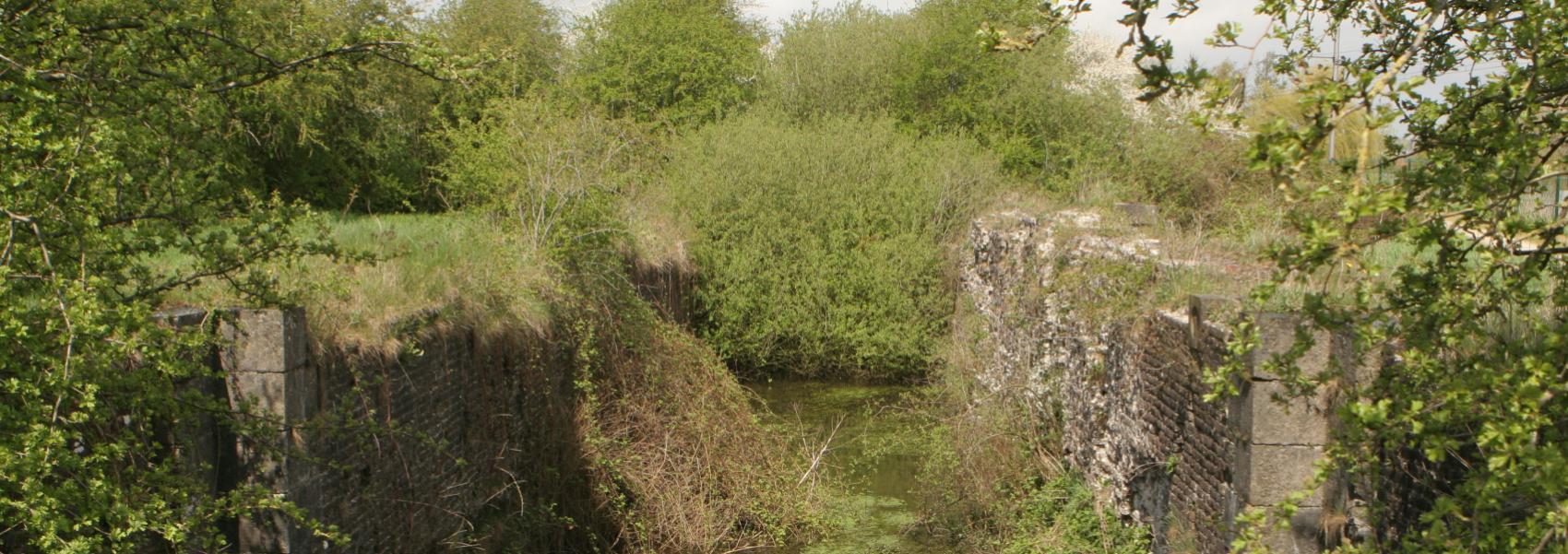 ruïne in het landschap