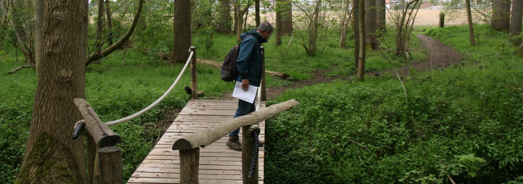 wandelaar op houten wandelpad