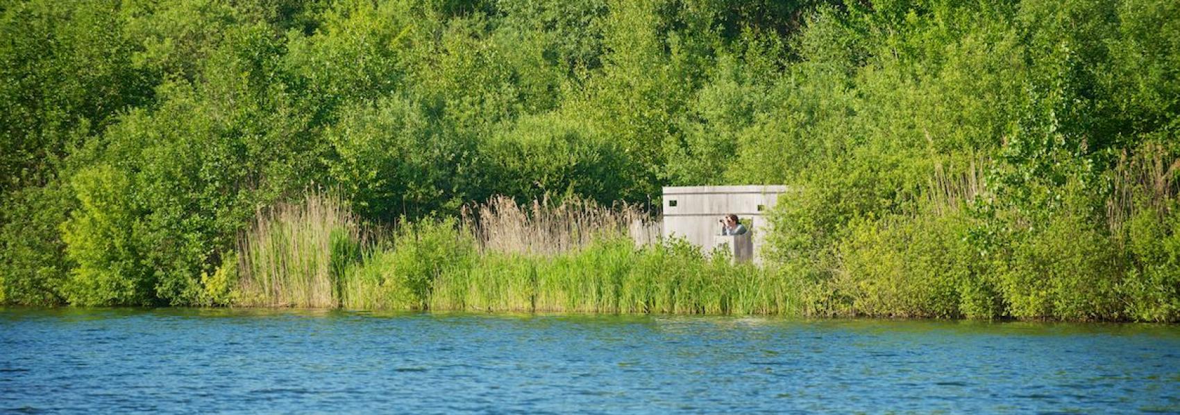 Vogelkijkhut aan de Weerdse vijver