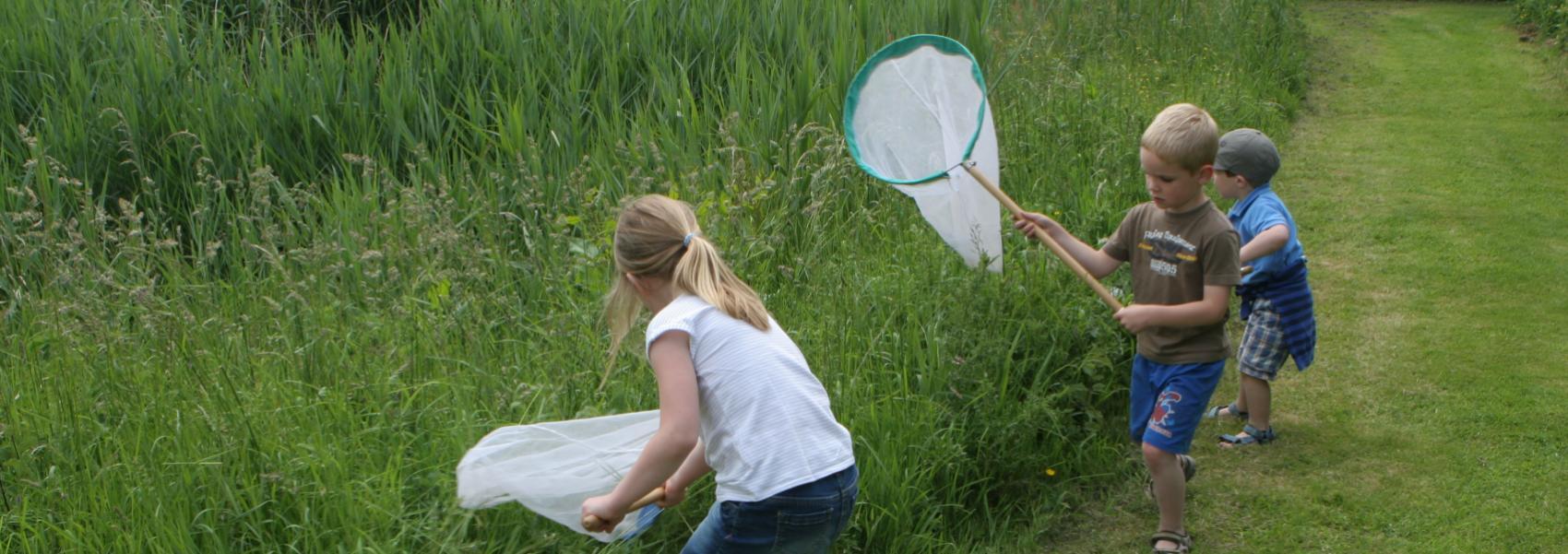 kinderen met vlindernetjes