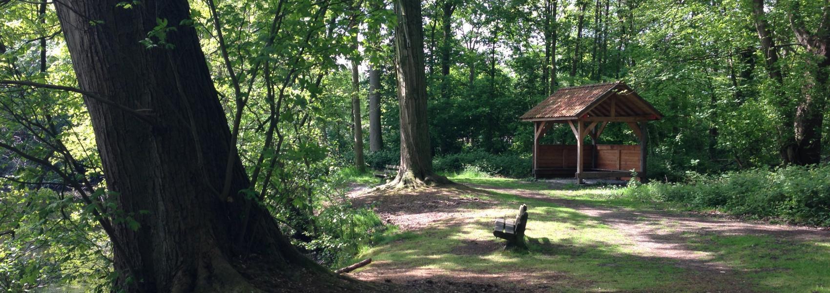 hut en bankje in het bos