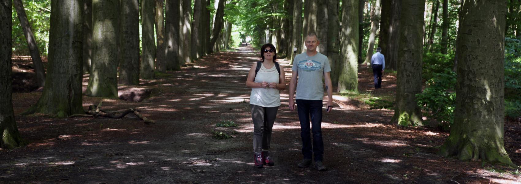 Wandelen in Meetshoven