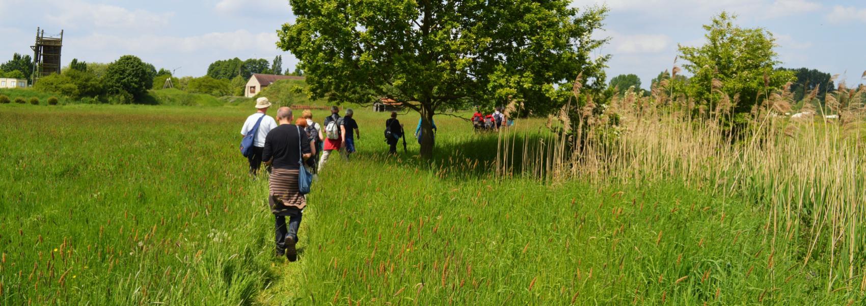 groep wandelaars in een graslandschap