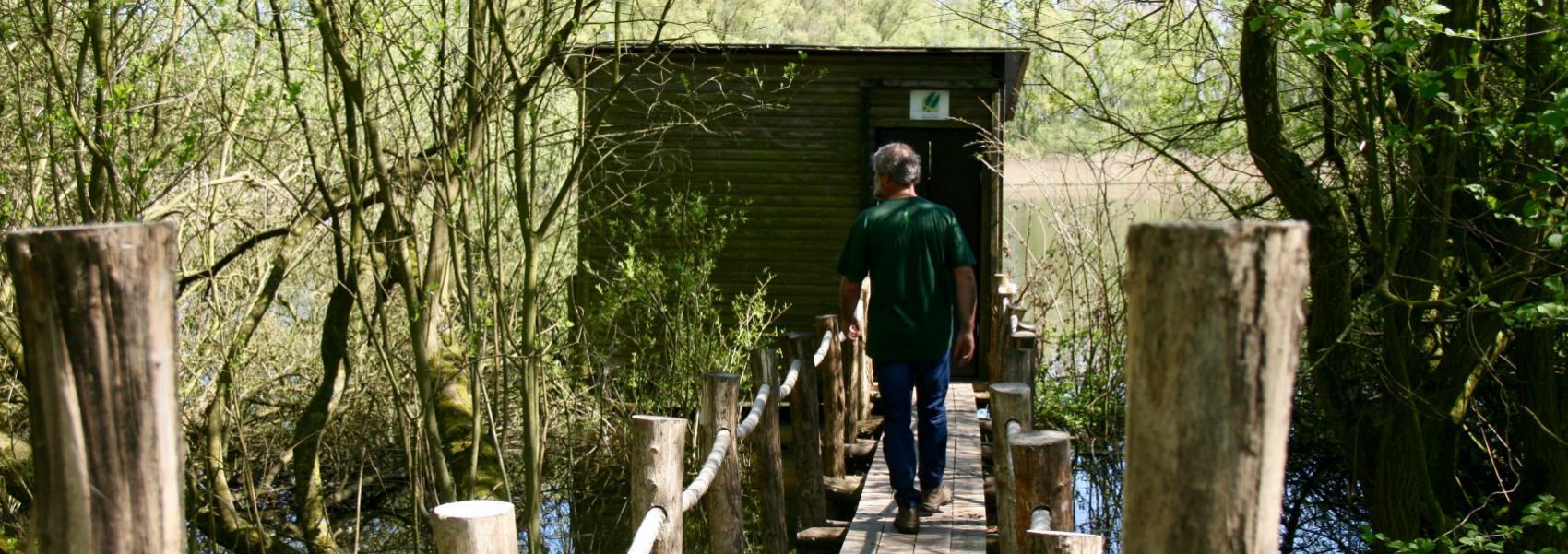 wandelaar op houten brug naar kijkhut