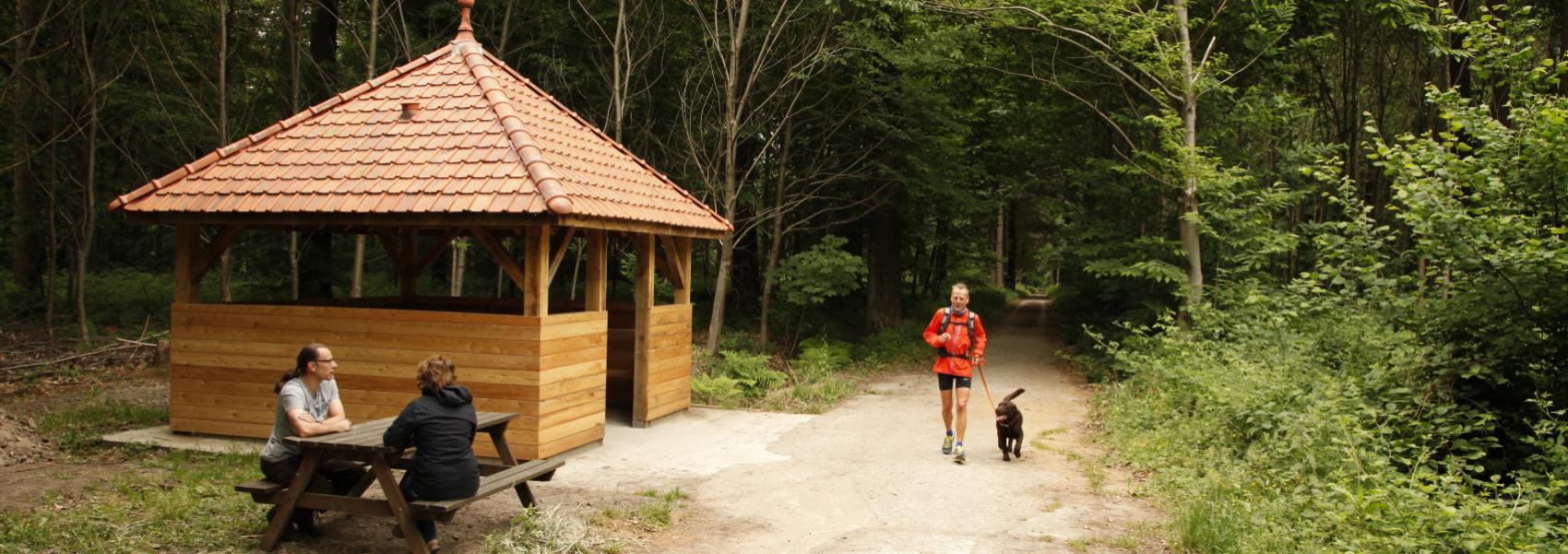 wandelaar met hond en 2 mensen op een picknickbankje bij de schuilhut