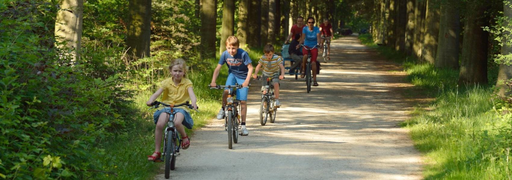 groepje fietsers in het bos
