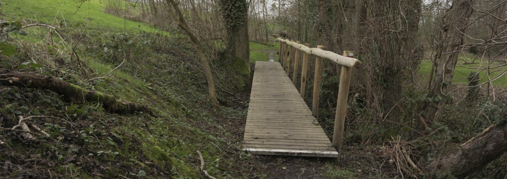houten brugje tussen de bomen