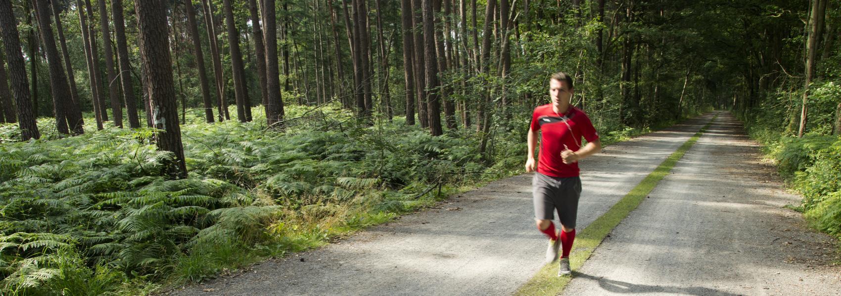 loper op de verharde weg in het bos